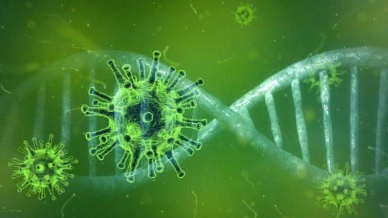 Coronavirus genome sequencing