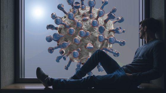 coronavirus antibodies