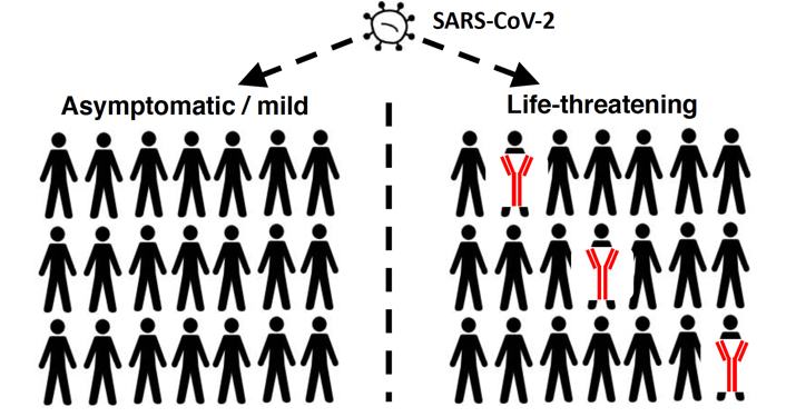 infection schematic