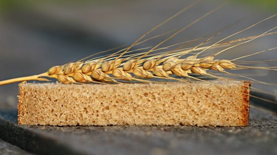 celiac disease, wheat