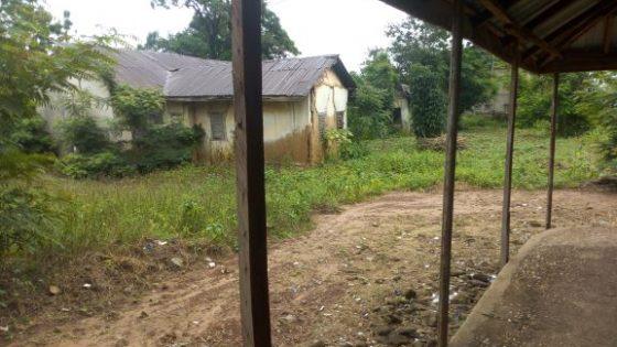 QUACKS IN NIGERIA