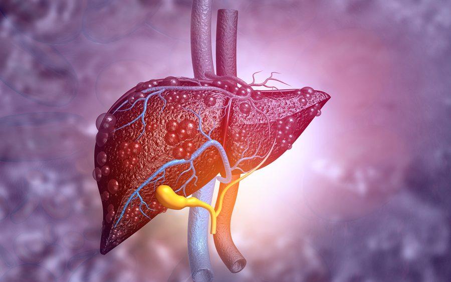 liver NMR